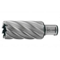 102810-43 Корончатое сверло 43 мм, универсальный хвостовик, HSS, Lap50 мм
